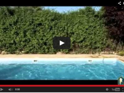 Programa 12: Cuidado de las piletas de natación